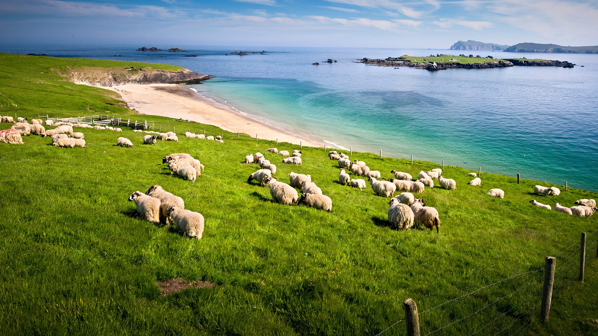 Blasket Islands, Ireland 1920x1080.jpg